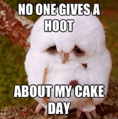 No One Gives A Hoot