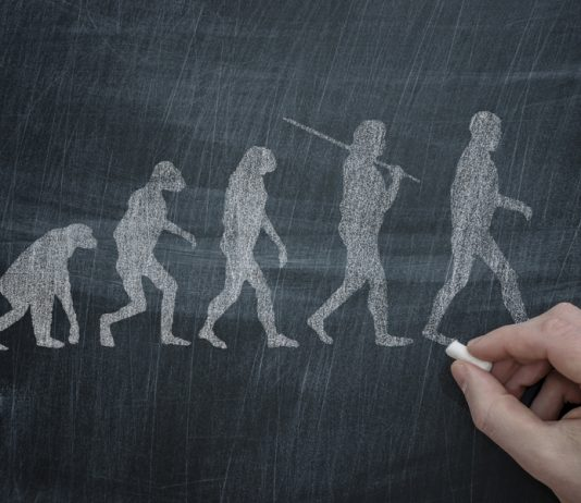 The Evolution Theory Is Lacking