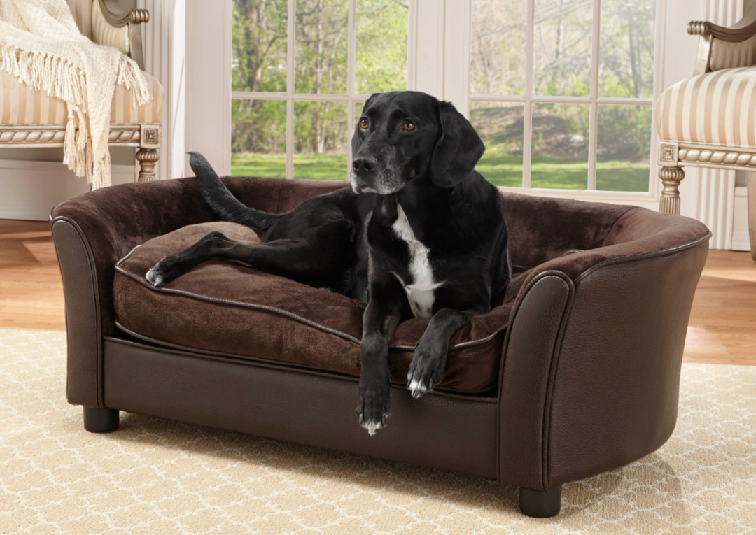 Top 10 Best Dog Beds Of 2017 Reviews Pei Magazine